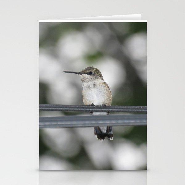 Power line hummingbird 5 Stationery Cards