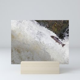 Leaping Salmon Mini Art Print