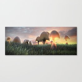The Mushrooms are Here Canvas Print
