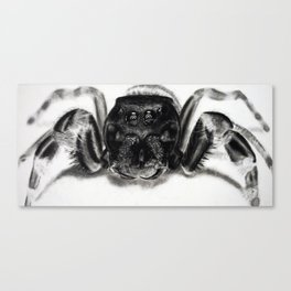 Arachnaphobia Canvas Print