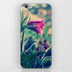 april rain II iPhone & iPod Skin