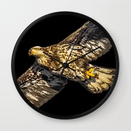Another Immature Bald Eagle Wall Clock