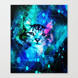 Kitty Cat Laser Lights at the Aleurorave Canvas Print