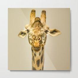 Giraffa's portrait Metal Print