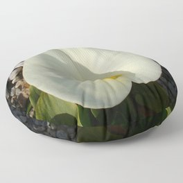 Overhead View of A White Calla Lily Against Pebbles Floor Pillow