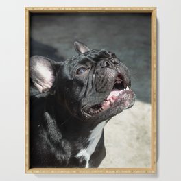 Sense of Wonder (French Bulldog) Serving Tray