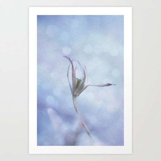 lightroom Art Print