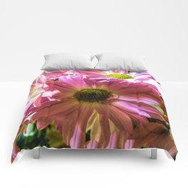 Sheltering Florals Comforters