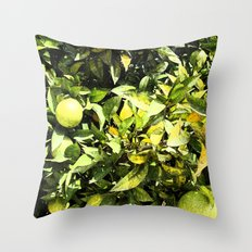 Oranges In Production Throw Pillow