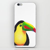 toucan iPhone & iPod Skins featuring Toucan by Jen Eva