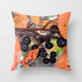 Choke Berries in Autumn Throw Pillow