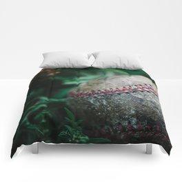Old Baseball Comforters