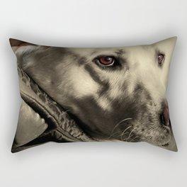 Brannoc Rectangular Pillow