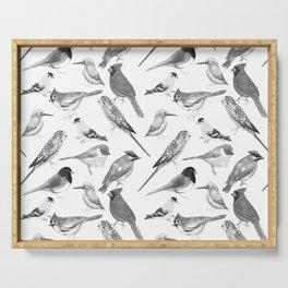 Black and white birds against white graphite artwork Serving Tray