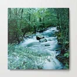 Between trees Metal Print
