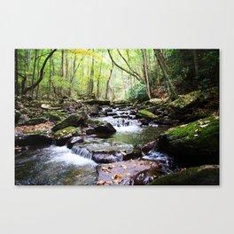 Virginia Hike Canvas Print