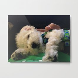 Nap Time for Baby Metal Print