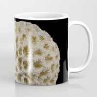coral Mugs featuring Coral by Wolff Prints