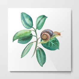 Green twig leaves with snail watercolor Metal Print