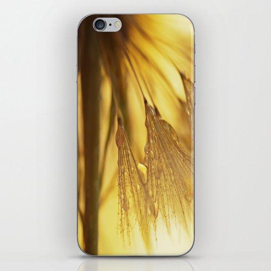 Dandelion Light iPhone & iPod Skin