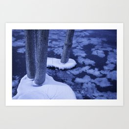 Winter Ice Surrounds Young Trees In The Otonabee River Art Print