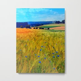 Fields of summer with flowers and scenery Metal Print