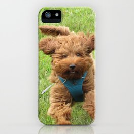 Luna the Labradoodle iPhone Case