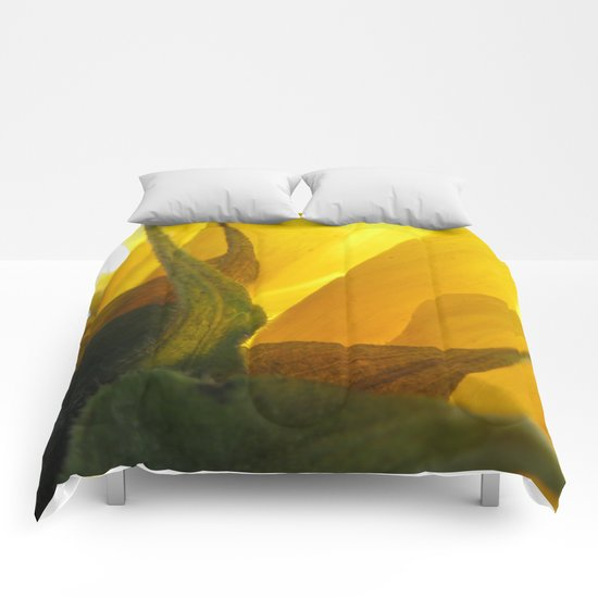 Sunflower 47 Comforters