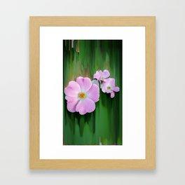 Pink Wild Roses Framed Art Print