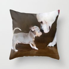 The Chihuahua vs The Pity Throw Pillow