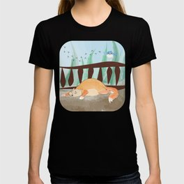 scaredy cat T-shirt