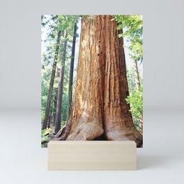 Trail of 100 Giants Mini Art Print