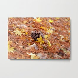 Colorful Japanese Maple Leaves on the Ground In Fall Photography Metal Print