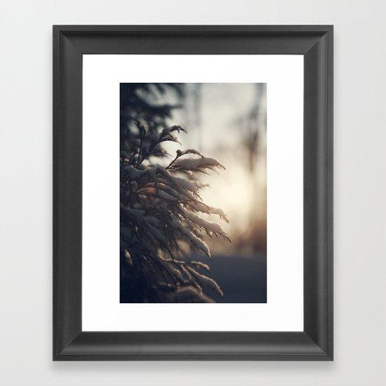 Winter Morn Framed Art Print