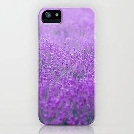 Rain on Lavender iPhone Case