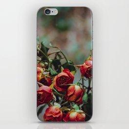 Windowsill Roses no. 1 iPhone Skin
