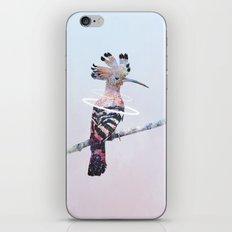 Hoopoe iPhone & iPod Skin