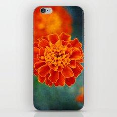 One in Orange iPhone & iPod Skin