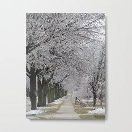 Icestorm III Metal Print