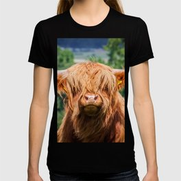 Cute Long-haired cow T-shirt