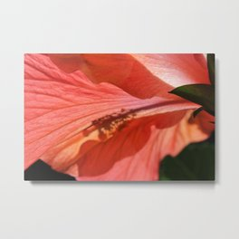 Red Hibiscus #3 Metal Print