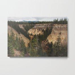 Canyonside Metal Print