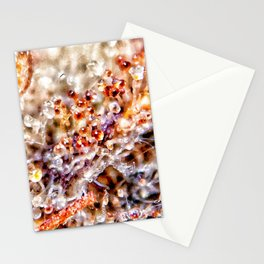 Amber Trichomes Purple Diamond OG Indoor Hydro Dank Buds Close Up View Stationery Cards