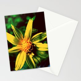Vintage Yellow Flower Stationery Cards