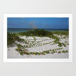 Railroad Vines on Boca V Art Print