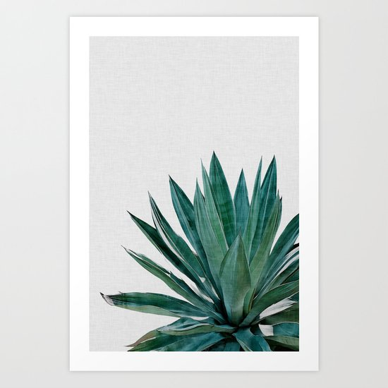 Agave Cactus by paperpixelprints