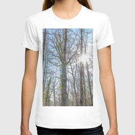 Sunrays on the forest T-shirt