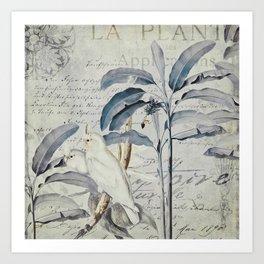 Nostalgic Cockatoo Jungle  Illustration Art Print