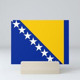 Bosnia and Herzegovina flag Mini Art Print