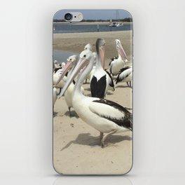 Pelicans in Paradise iPhone Skin